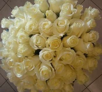 Размер букет 51 розы спб, букет от гостей на свадьбу фото
